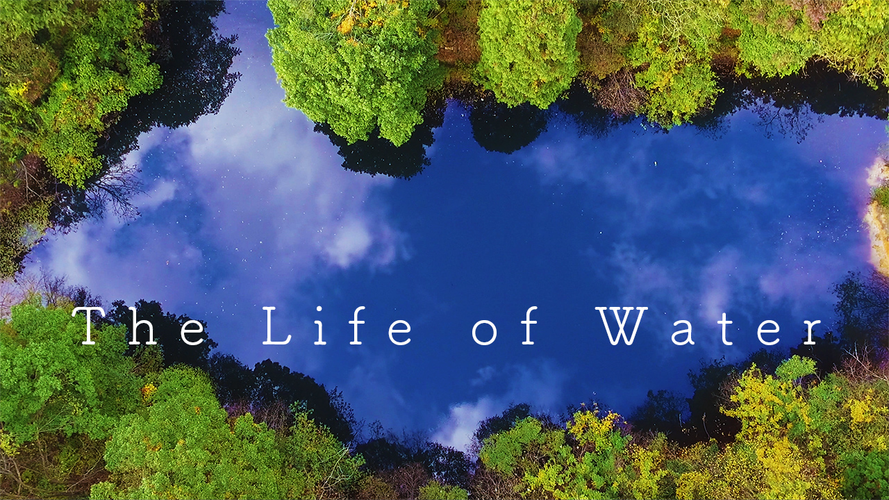 The Life of Water - My RODE Reel 2020