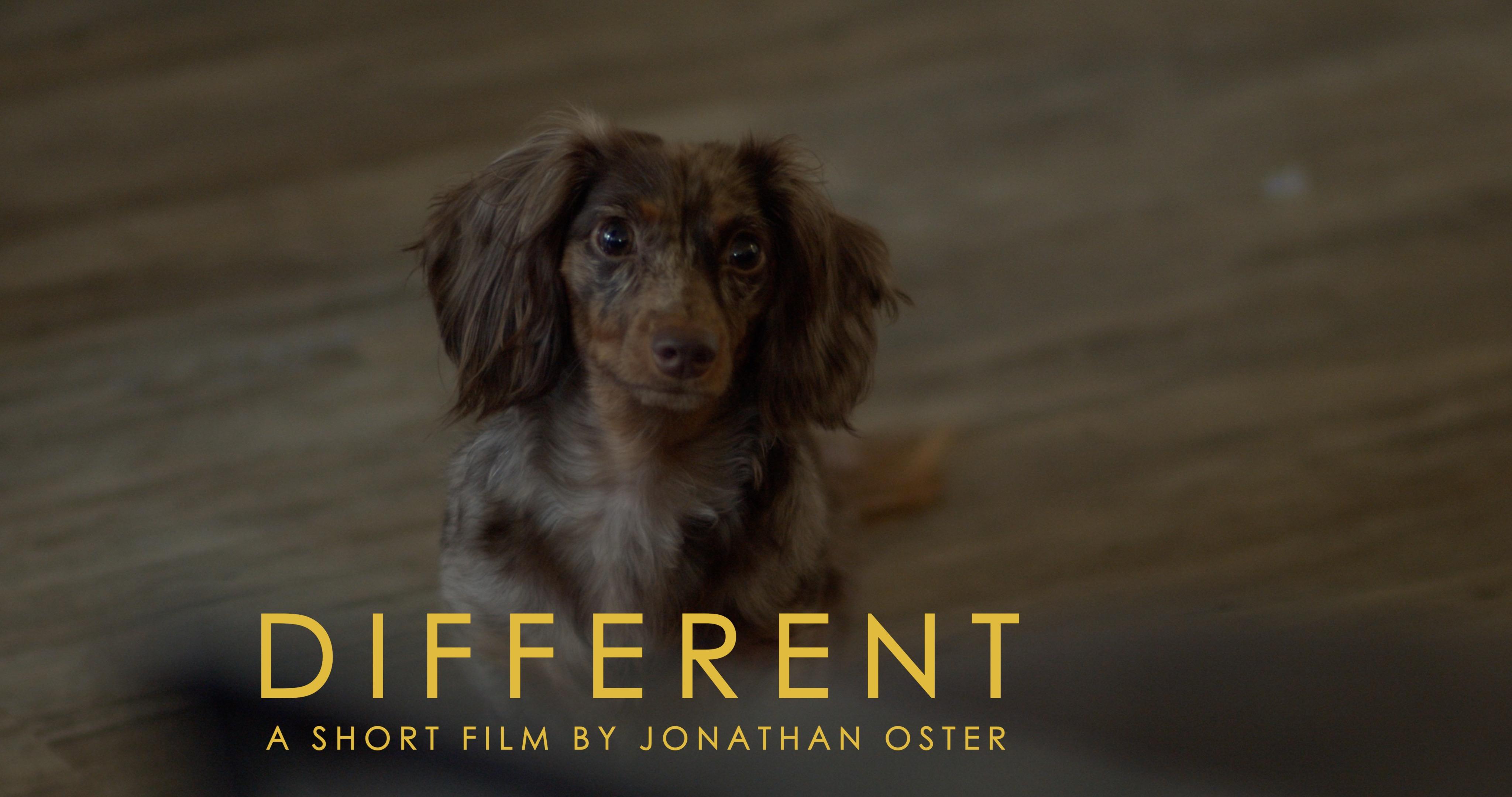Different | My RØDE Reel 2020