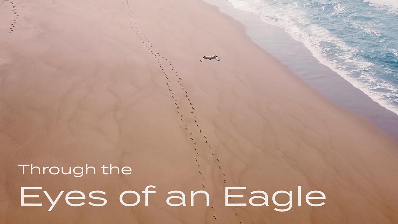 Through the eyes of an Eagle - My RØDE Reel 2020