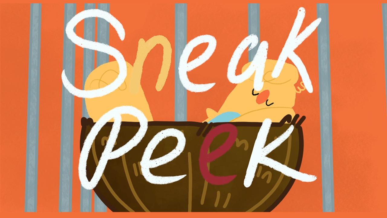 """Sneak Peek (short film) - """"My RØDE Reel 2020"""""""