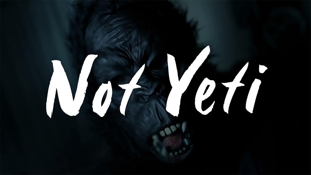 Not Yeti - My RØDE Reel 2020