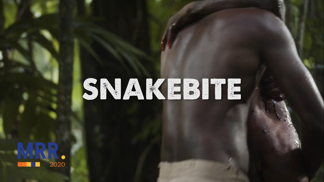 SNAKEBITE SHORT FILM - MY RØDE REEL 2020