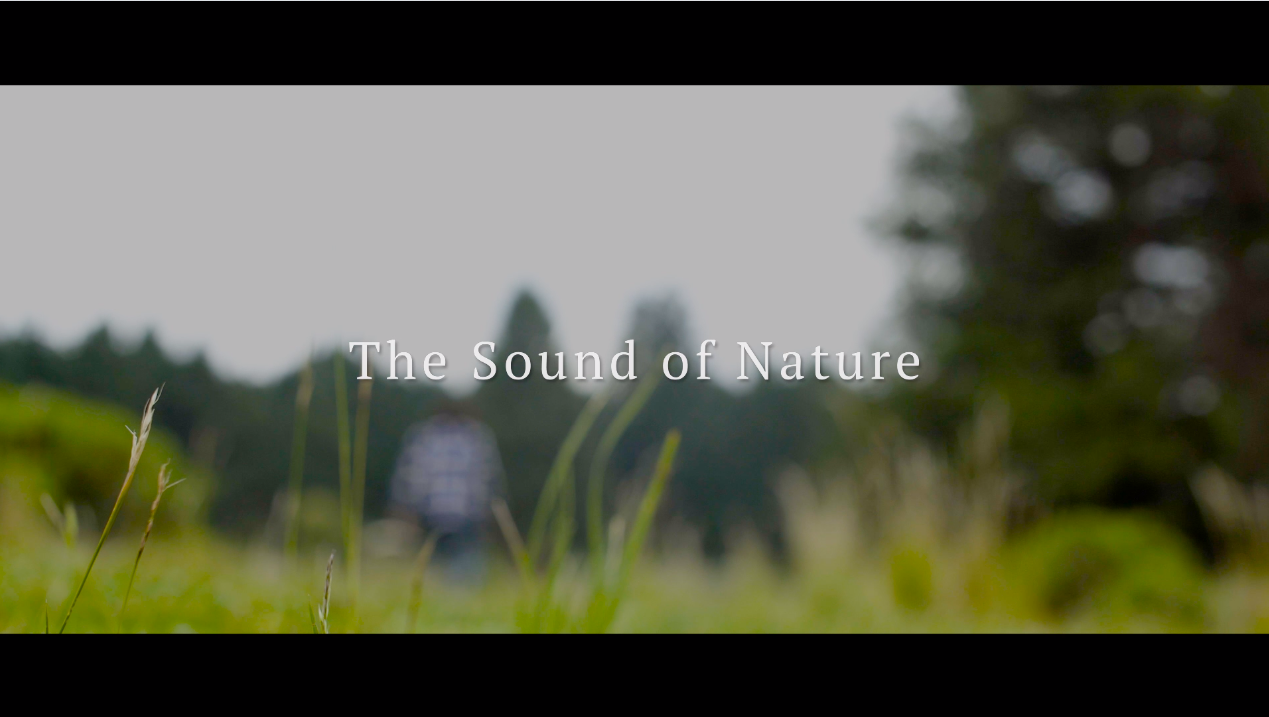 The Sound Of Nature - My Rode Reel 2020