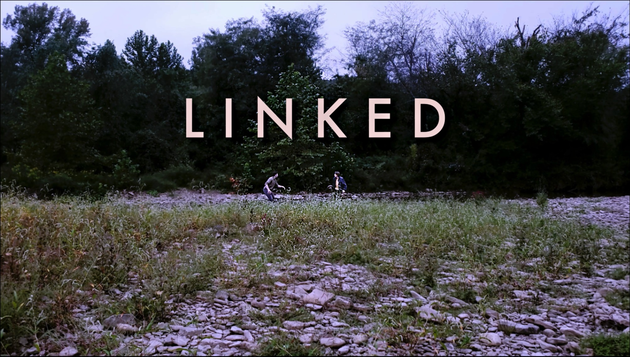 Linked - My RØDE Reel 2020