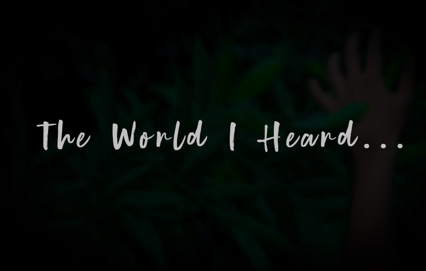 The World I Heard | My RØDE Reel 2020
