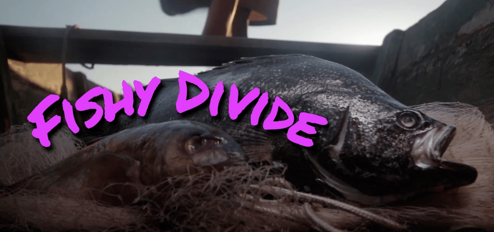 Fishy Divide - My Rode Reel 2020