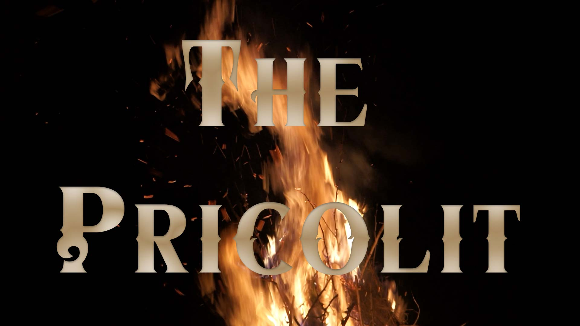 The Pricolit   MY RØDE REEL 2020 YOUNG FILMMAKER