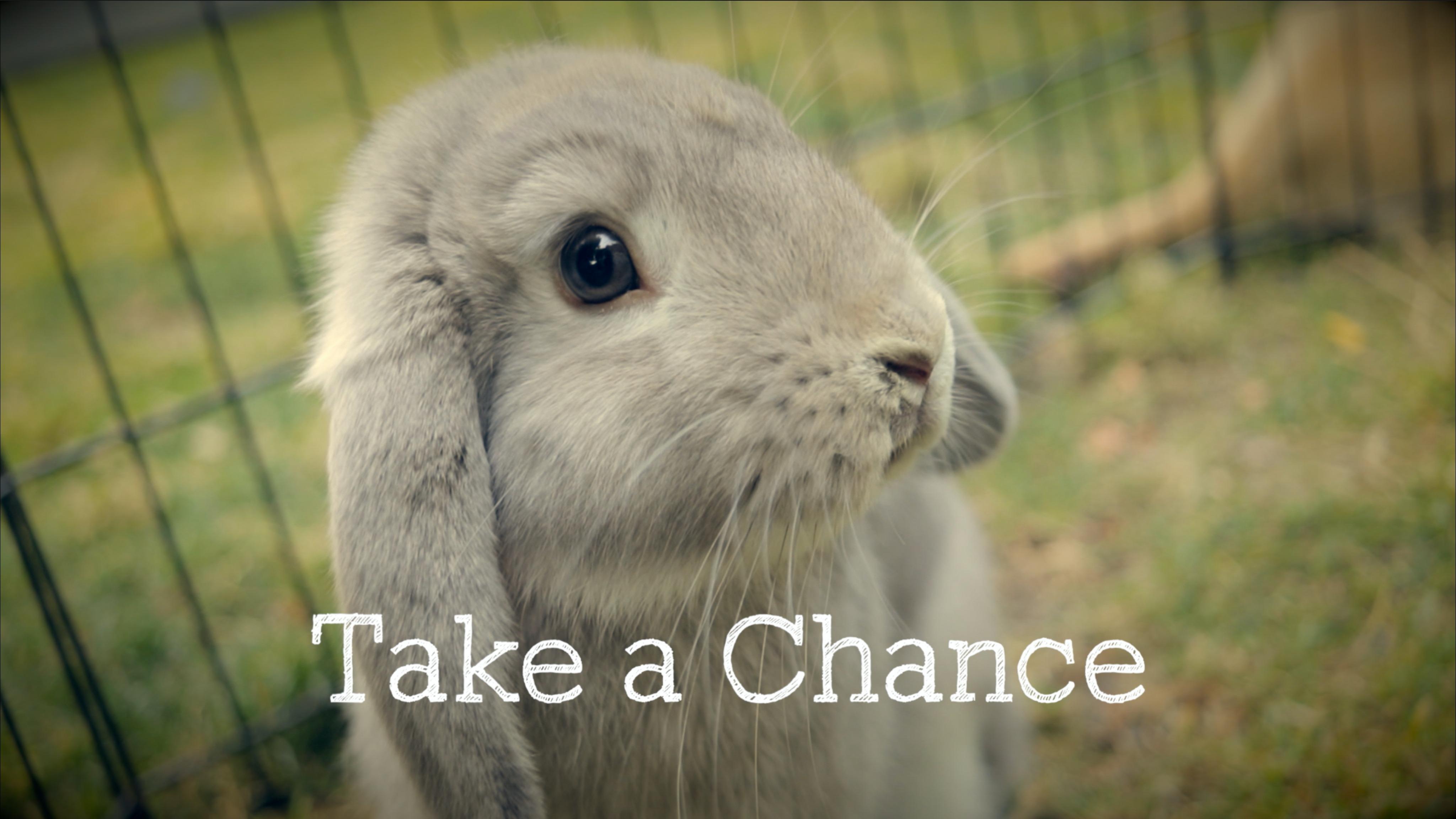 Take a Chance | Short Film | My RØDE Reel 2020