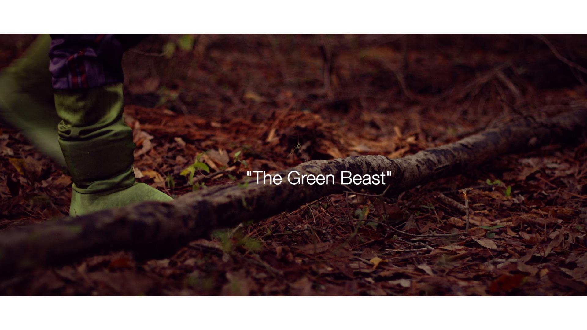 My RØDE Reel 2020 || The Green Beast || Short Film