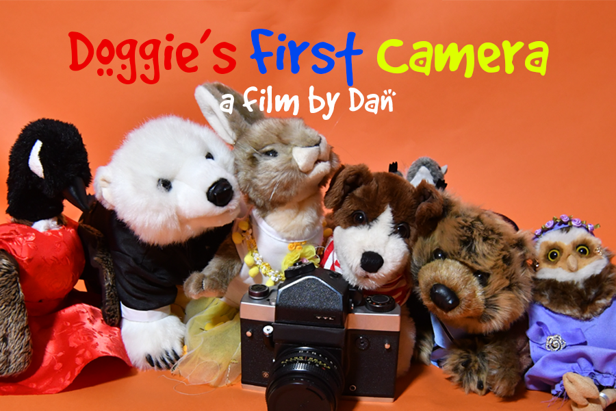 Doggie's First Camera | My RØDE Reel