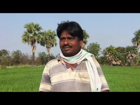Farmer - A Small Documentary