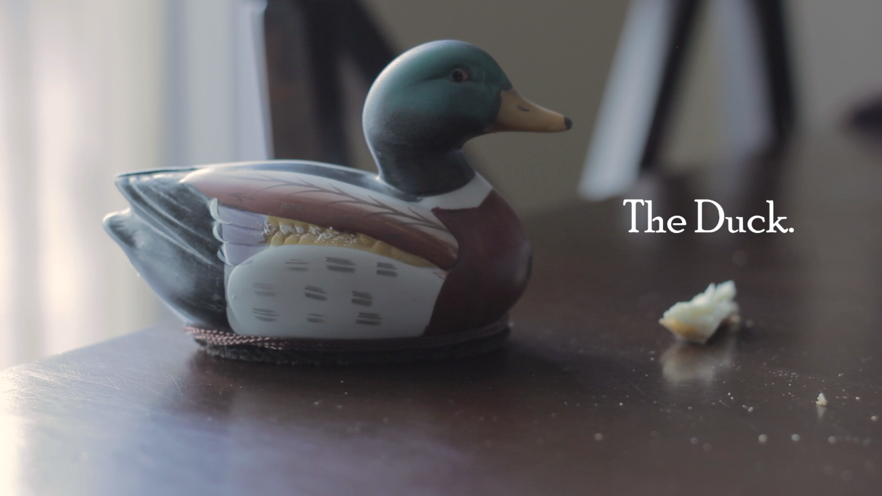 """""""The Duck."""" - A Short Film for My RODE Reel 2020 (#myrodereel2020)"""