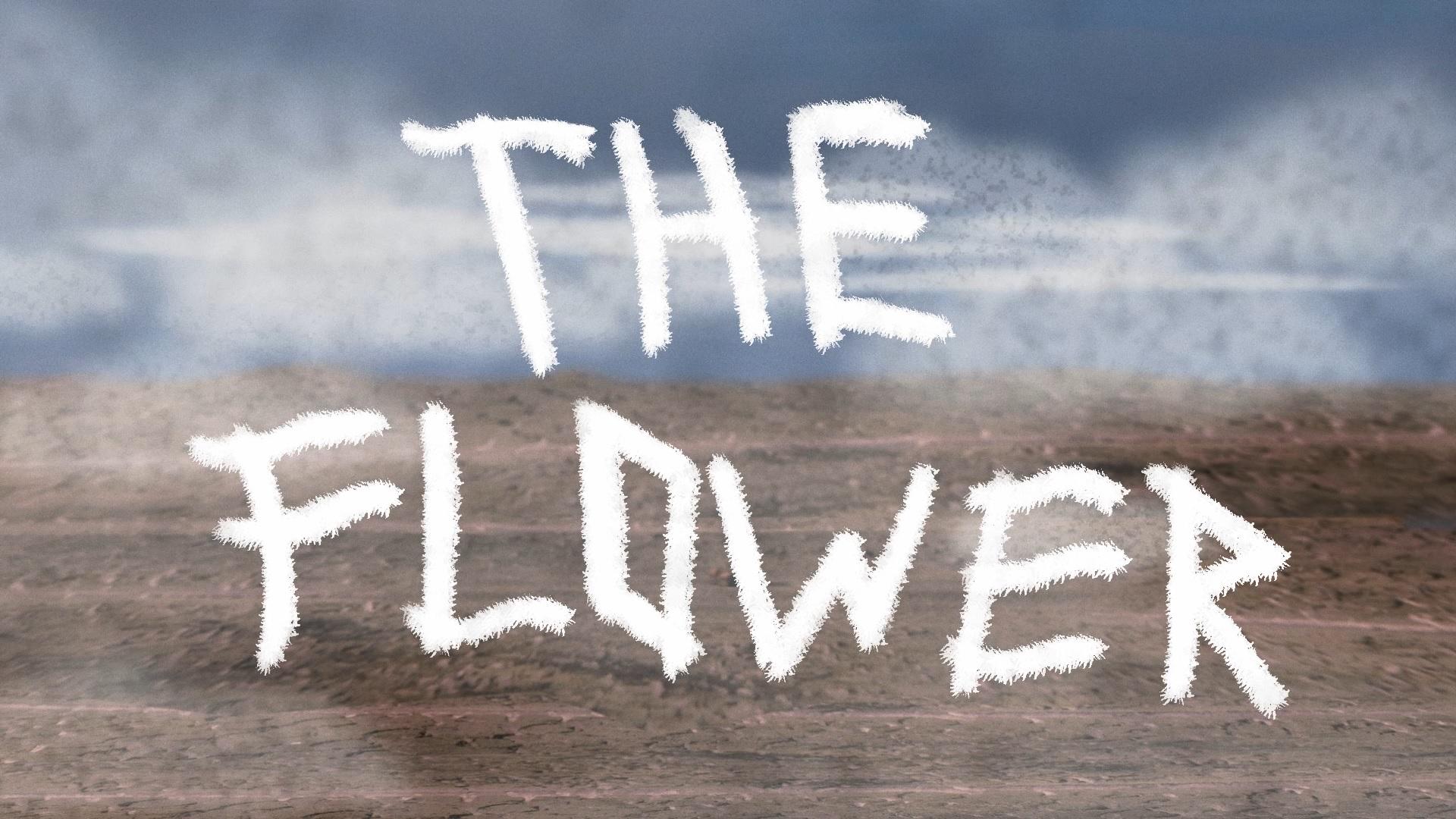 The Flower  l My RØDE Reel 2020
